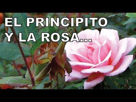 7 best images about El principito on Pinterest | Colors ...