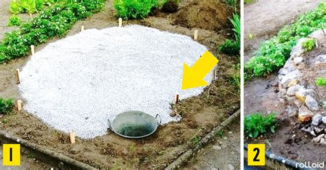 7 Increíbles ideas para decorar tu jardín y aprovechar al ...