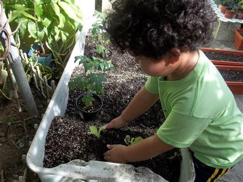 7 plantas que los niños podrán sembrar de manera sencilla ...