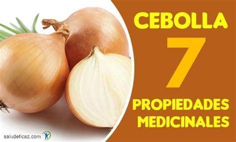 7 propiedades medicinales de la cebolla | Salud Eficaz
