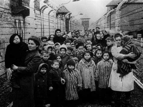 70th Anniversary of Auschwitz Liberation: Can the World ...