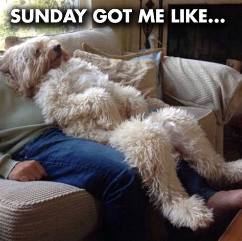 78 Best images about Weekend Humor on Pinterest | Good ...