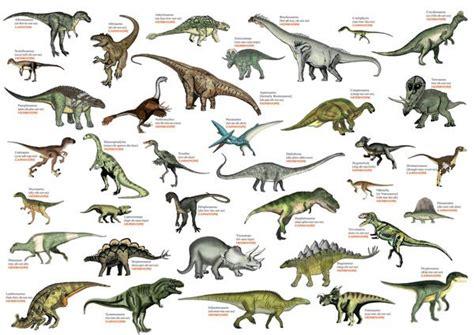 8 best Warren s Dinosaurs images on Pinterest   Dinosaurs ...