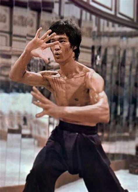 819 best Bruce Lee, The Dragon images on Pinterest ...