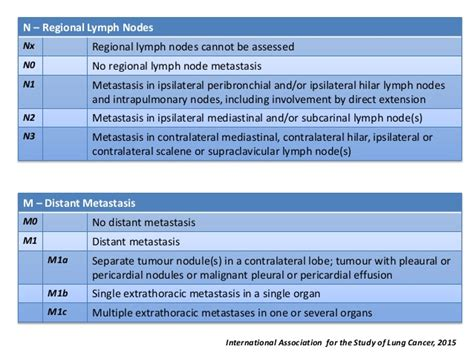 8th Edition of the TNM Classification for Lung Cancer