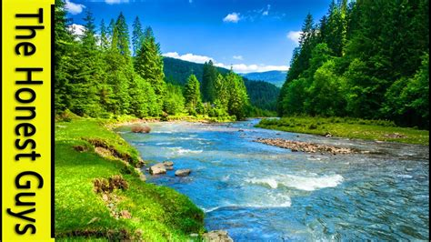 9 HOURS NATURE SOUNDS: RIVER IN THE SHIRE. Relaxation  NO ...
