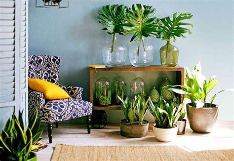99 Great Ideas to display Houseplants | Indoor Plants ...