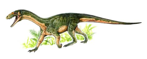 A Dinosaur Cousin's Crocodile Ankles Surprise ...
