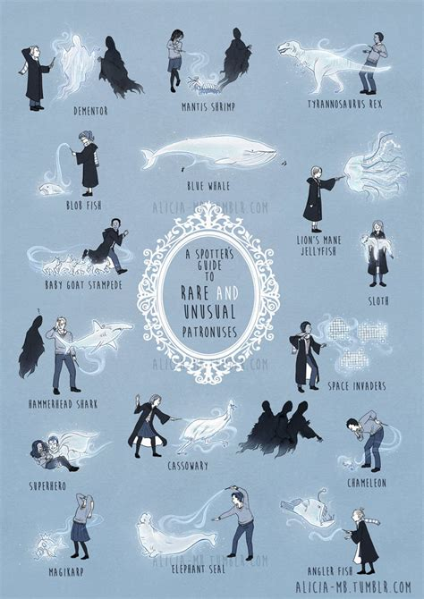 A Field Guide To Unusual (And Hilarious) Harry Potter ...