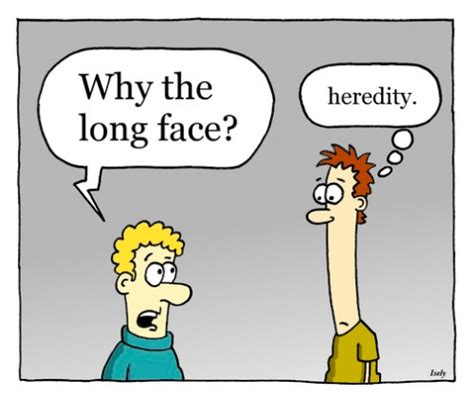A fun and easy way to remember 'heredity' in English - Memrise