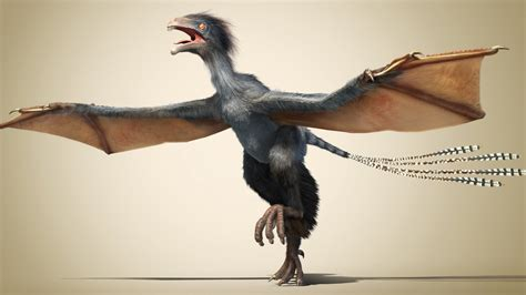A new dinosaur: Flying without feathers   YouTube