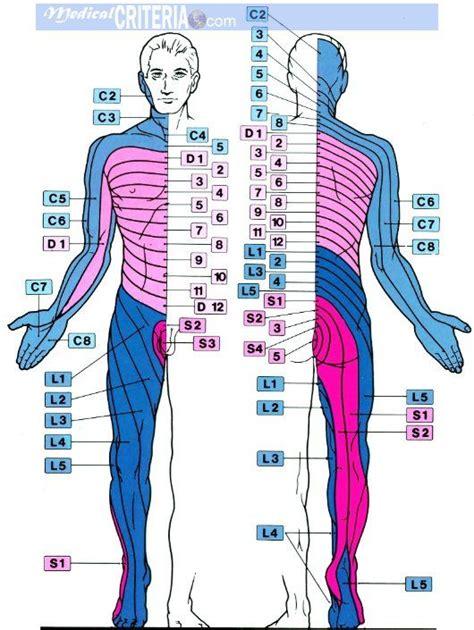 Acido urico pies hinchados- Leer más artículos, guías ...