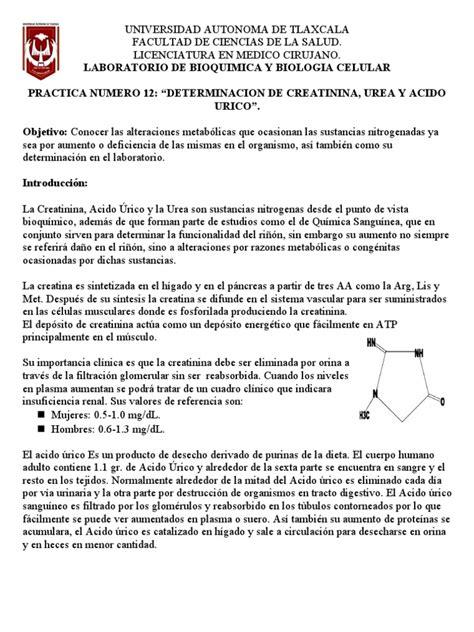 Acido urico valores normales en hombres y mujeres  Leer ...