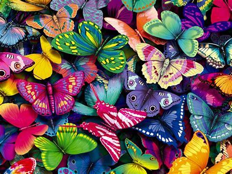 adhara yoga: El efecto mariposa