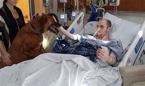 Adiós viejo amigo: Un hombre muriendo de cáncer y le da el ...