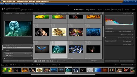 Adobe Photoshop Lightroom Classic CC 2018. 7.0.1 RePack by ...