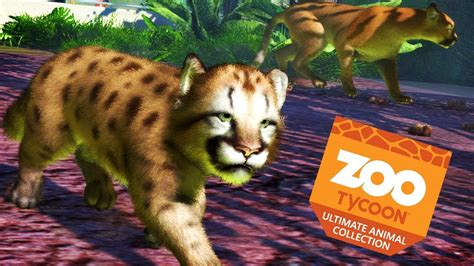 ADORABLE BABY COUGAR | Zoo Tycoon : Ultimate Animal ...