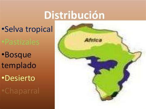 Africa informacion