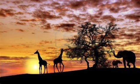 Africa: perspectivas de desarrollo económico según PNUD ...