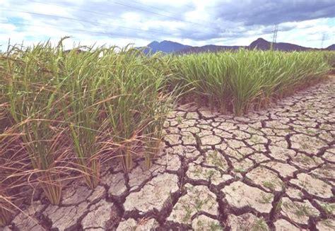 Agotamiento de recursos naturales   erenovable.com
