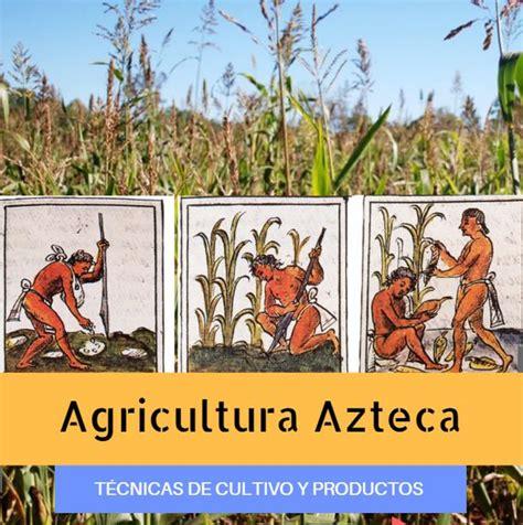 Agricultura Azteca: ¿Qué Cultivaban los Aztecas? + Técnicas