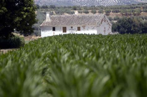 Agricultura reduce el plazo mínimo de arrendamientos de ...