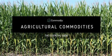 Agricultural Commodities: Learn How To Trade Them at ...