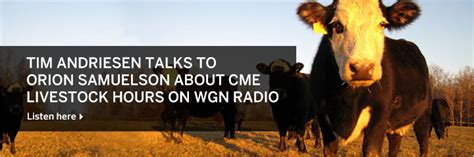 Agricultural Commodities Products Cme Group   Autos Weblog