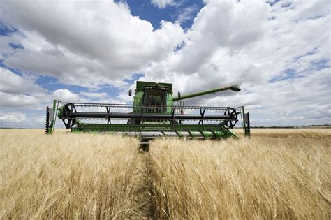 Agriculture in France : From the wheat in Beauce to the ...