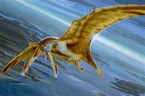 Ahora resulta que los pterodáctilos no podían volar, según ...