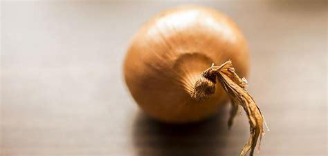 Ajo y Cebolla - ¡Combinación Perfecta para su Salud ...