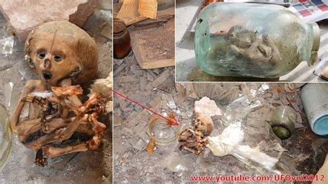 Alien Mummy Found In Russian Laboratory Abandoned   YouTube