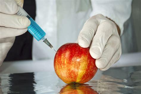 Alimentos transgénicos: ventajas y desventajas - Taringa!