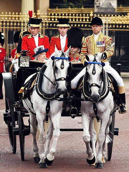 All About the Trooping the Colour Horses