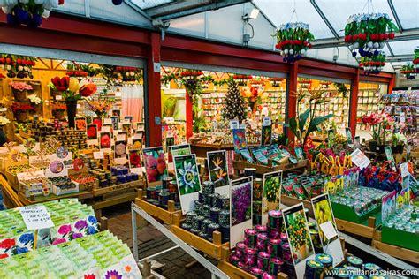 Amsterdam: De compras en el mercado de las flores