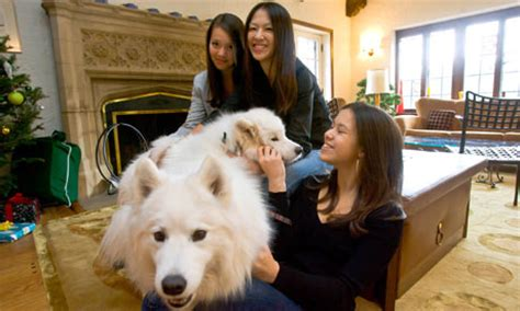 Amy Chua:  I m going to take all your stuffed animals and ...
