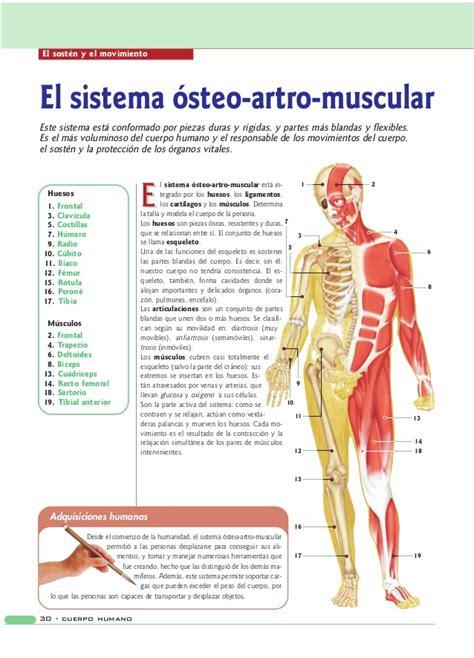 Anatomia y-fisiologia-del-cuerpo-humano
