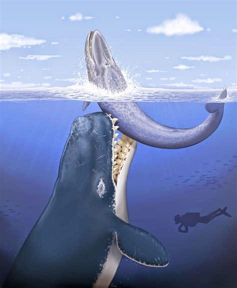 animales marinos de la prehistoria más monstruosos