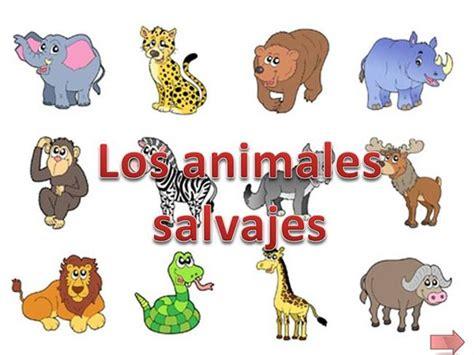 Animales salvajes para niños   Imagui
