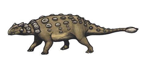 Ankylosaurus - Wikipedia
