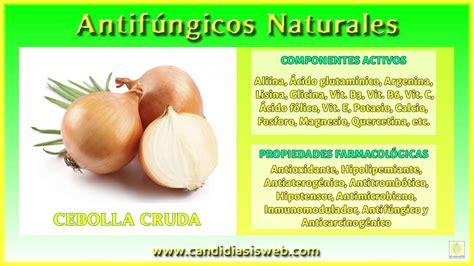 Antifúngicos de origen natural - Cebolla