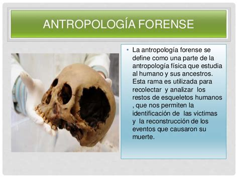 Antropología forense ( identidad e Identificacion)
