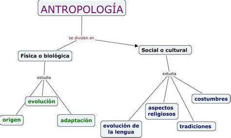 Antropologia Social: RAMAS DE LA ANTROPOLOGIA