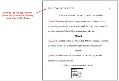 APA formatting rules for your paper