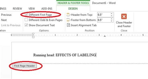 Apa research paper running head