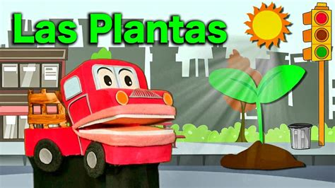 Aprendemos sobre Las Plantas   Videos Educativos para ...
