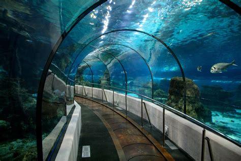 Aquarium Barcelona | BCN Events & Crawls