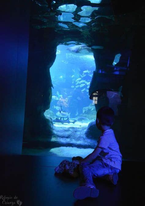 Aquarium de Donostia-San Sebastián. Palacio del mar ...