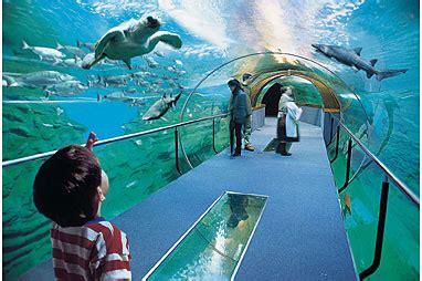 Aquarium de San Sebastián : Basque Destination