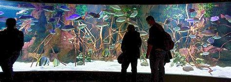 Aquarium de San Sebastián - Donostia - Horario, precio ...